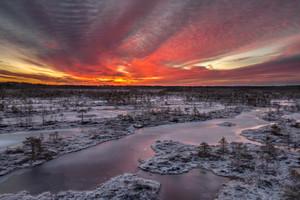 Fiery dawn in the bog
