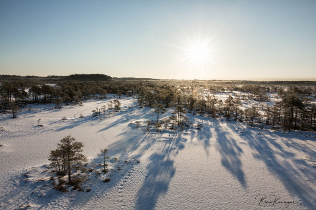 Snow-covered Kakerdaja bog