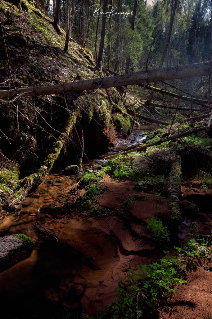 Paistu Ancient Valley