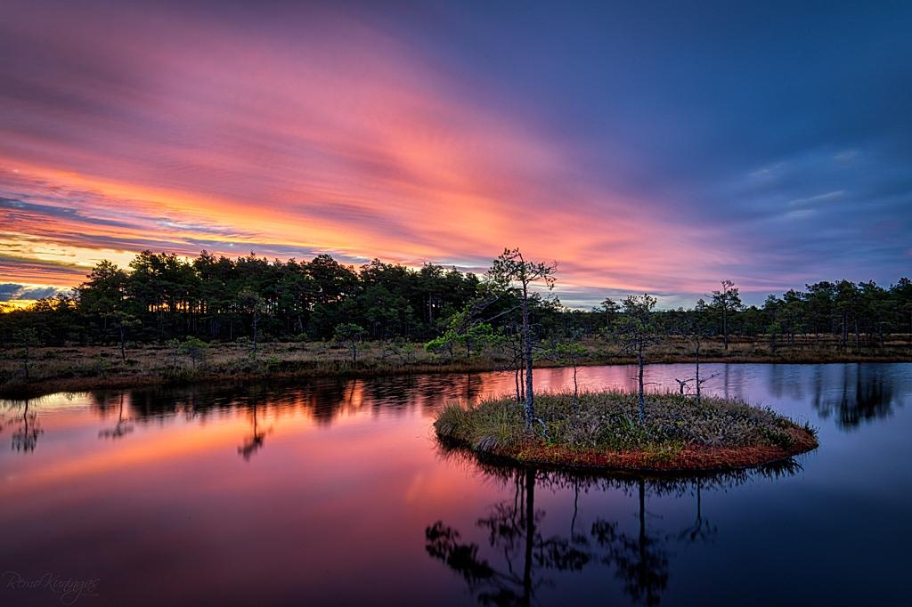 Vahest harva õnnestub rabas olles näha kaunist päikestõusueelset värvidemängu, kui veel horisondi taga olev päike hakkab järjest rohkem ja rohkem taevast katvaid pilvi punaseks värvima ja rabalaukaid ääristava sabla toone võtma. Kõike seda õnnestub näha kümnekonna minuti jooksul kuniks päike puude tagant piiluma hakkab ja kõigest sellest ilust jääb järgi ainult mälestus ja antud juhul ka jäädvustus.