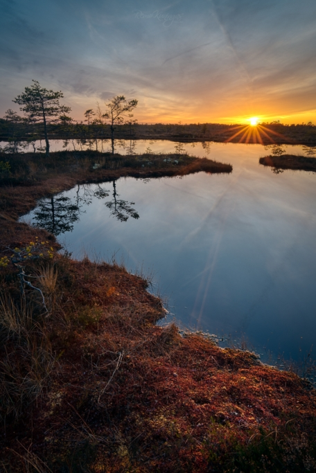 Sügisene lummavalt värviküllane rabalauka äärne sammaldunud pinnas nautimas loojuva päikese viimaseid jõulisi kiiri. Mõne hetke pärast on päike vajunud juba osaliselt puupiir taha ning valgus enam maapinnani ei ulatu.