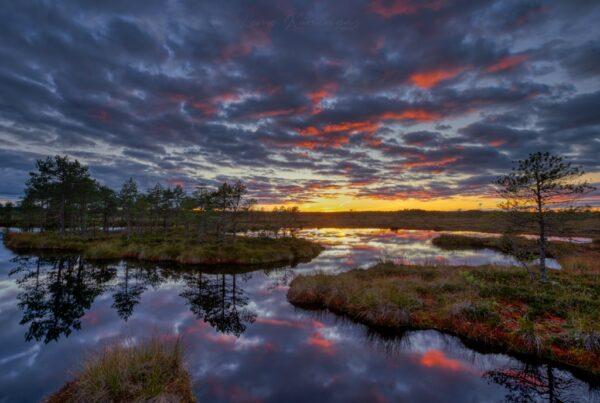 Päikeseloojangu poolt punaseks võõbatud pilveharjad peegeldumas rabalaugastiku pinnalt (Soomaa rahvuspark)