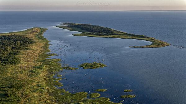 Abruka külje all asuv Vahase saar linnulennult vaadelduna
