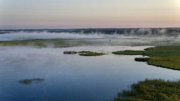 Varahommikune udu kerkimas vaikselt kerkimas veesilmadest (Parika looduskaitseala)